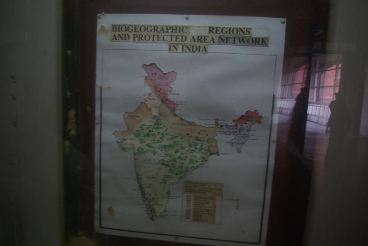 Mapka w największym muzeum Kalkuty wyglądająca jak gazetka szkolna... no cóż, bywa