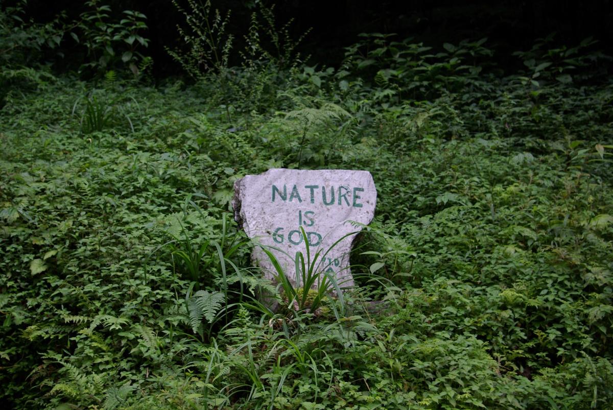 Natura jest bogiem – pewnie łatwiej jest żyć wierząc, że to prawda